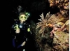 Imagen de PADI Adventure Diver